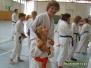 Karate Lehrgang in Elsterwerda mit Sensei Safar 16.5.09